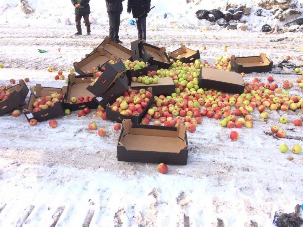 Еще 25 килограммов санкционных яблок уничтожили вБлаговещенске